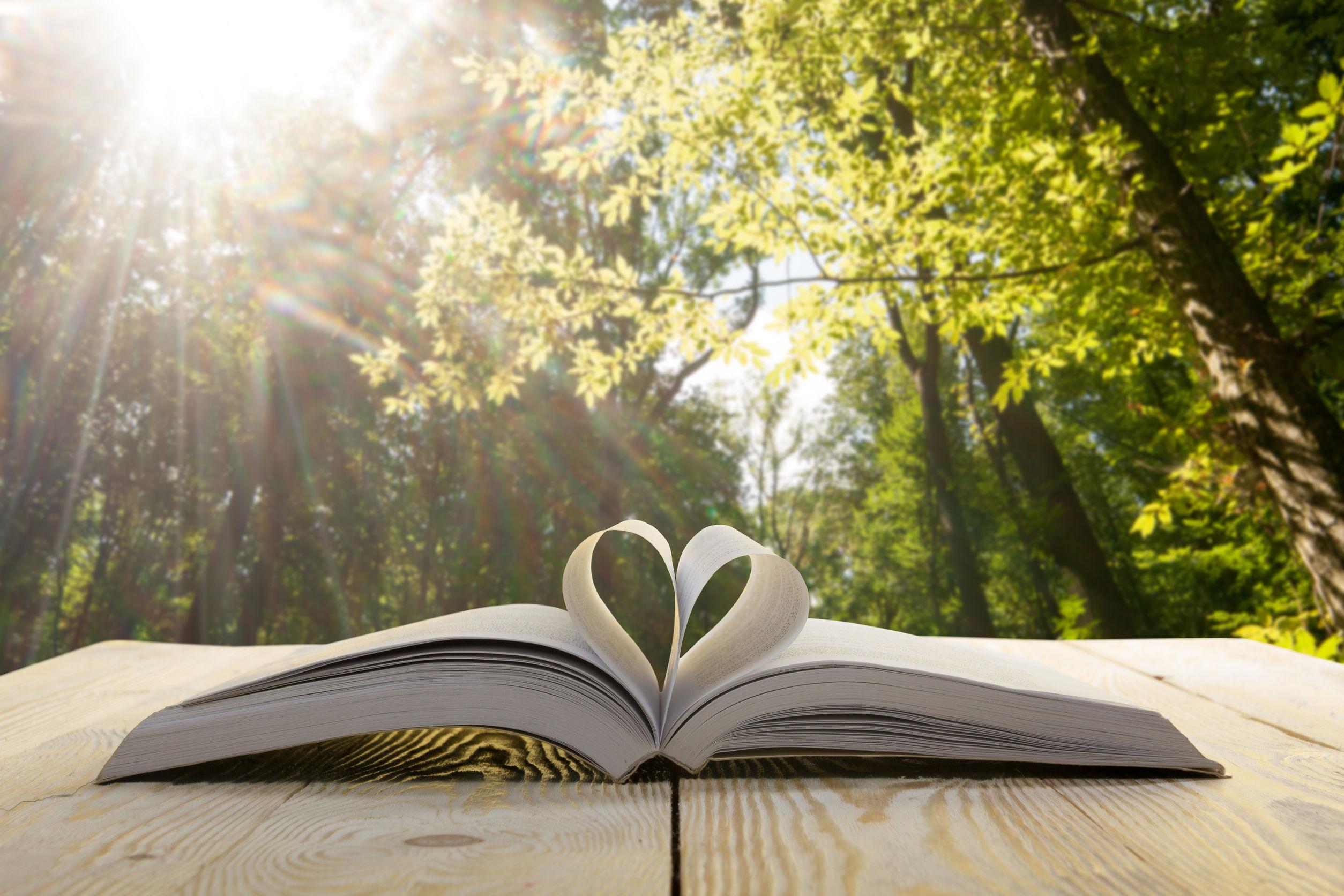 Novelas eróticas: ¿Cuál es la mejor del 2020?