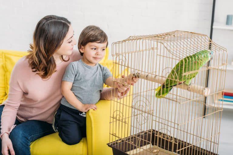 Madre e hijo mirando loro en jaula