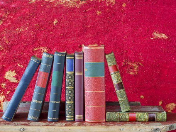 Libros con fondo magenta