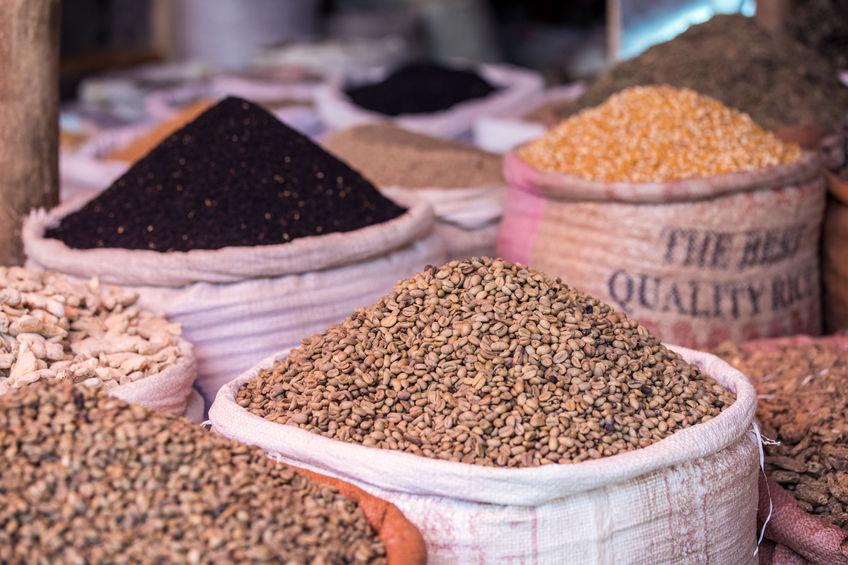 Sacos-de-semillas