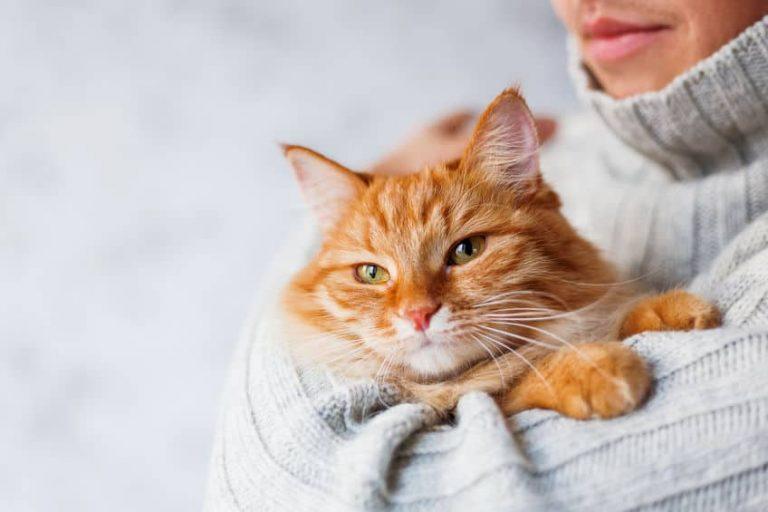 Hombre con suéter blanco y gato