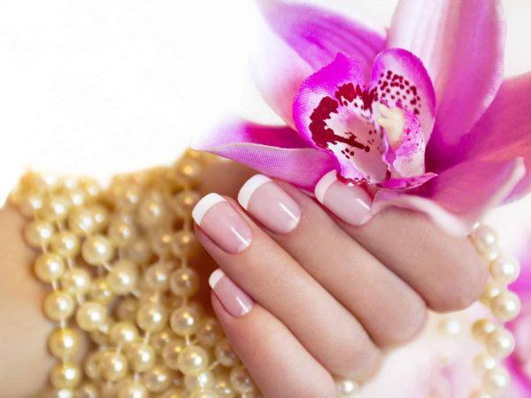 Manos sosteniendo flor