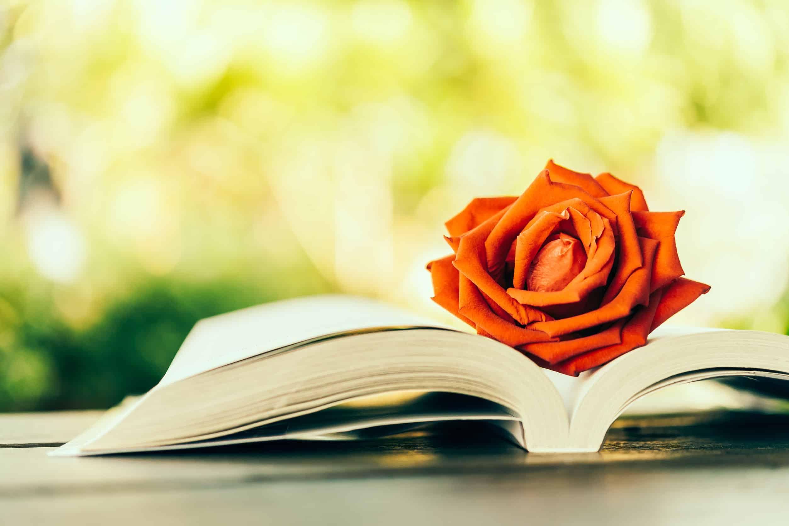 Libros románticos destacada