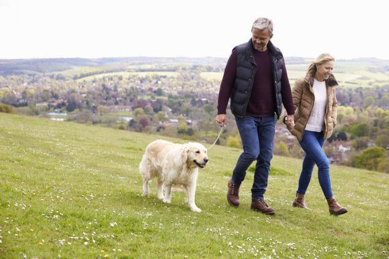 Pareja paseando un perro por la montaña