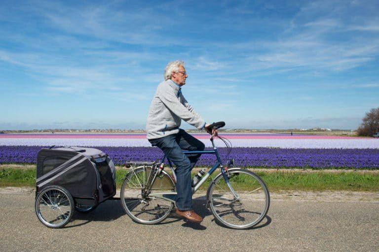 Un hombre y un perro pasean con una bici y un carro de perros