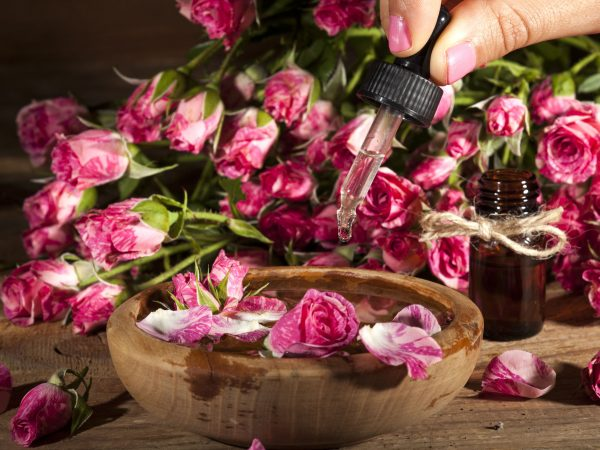 Closeup of bottle and bowl with rose essential oil on wooden background.