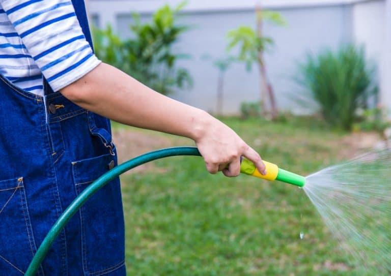 Hombre regando jardín