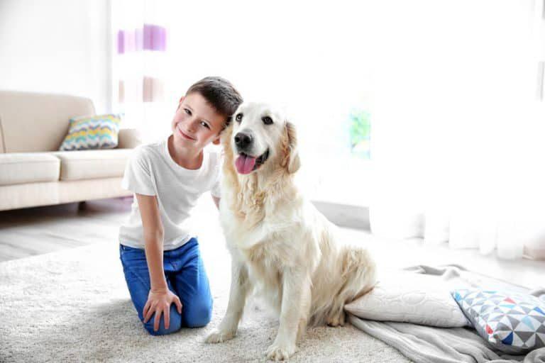 Um menino feliz com um cão