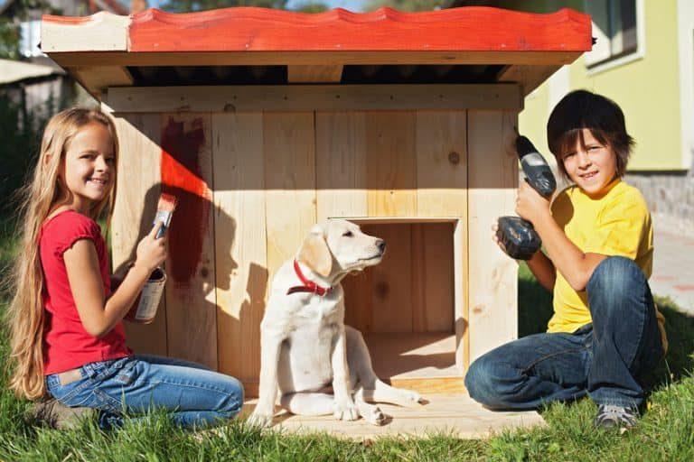 Dos niños construyendo una caseta