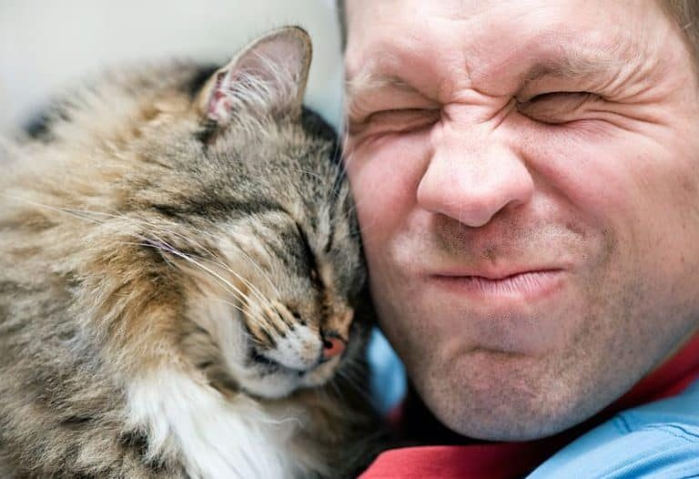 Rostros de hombre y gato juntos