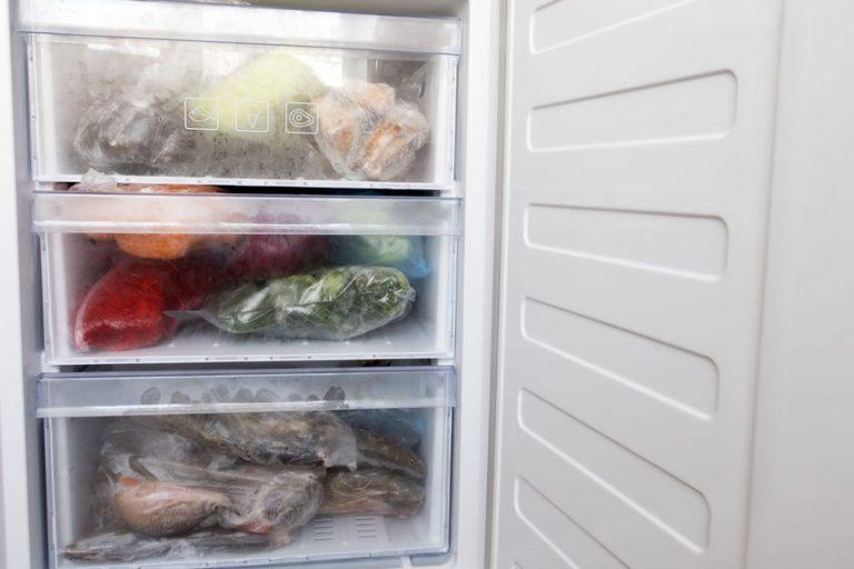Congelador con comida