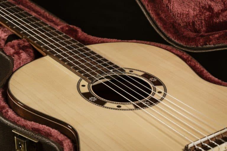Guitarra en su funda