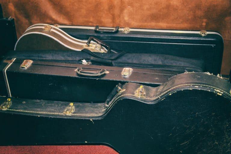 fundas de guitarra vacias