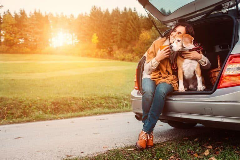 Perro beagle con su dueña
