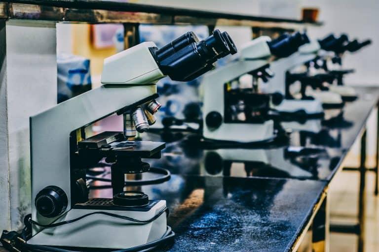 Muchos microscopios
