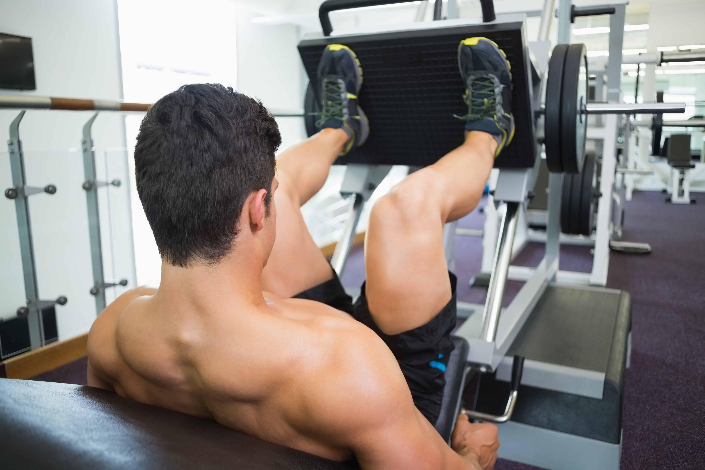 Que musculos trabaja la prensa de piernas
