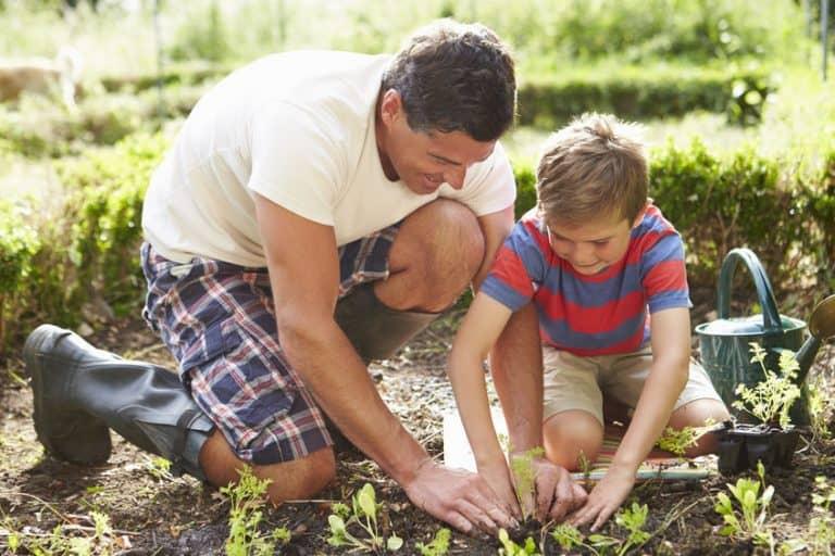 Un padre y su hijo haciendo jardinería
