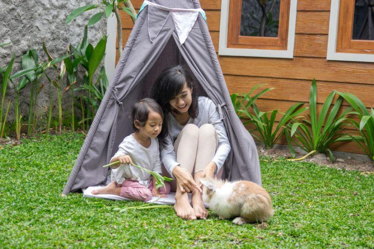 Niños jugando con su conejito