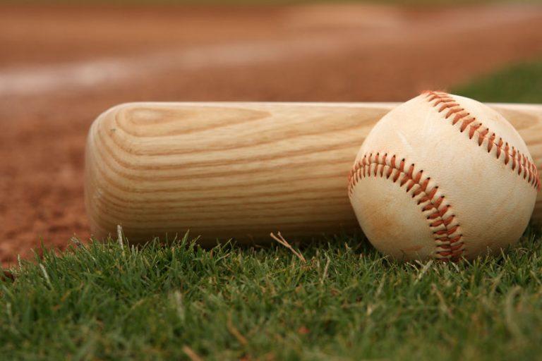 Bate de béisbol en la grama