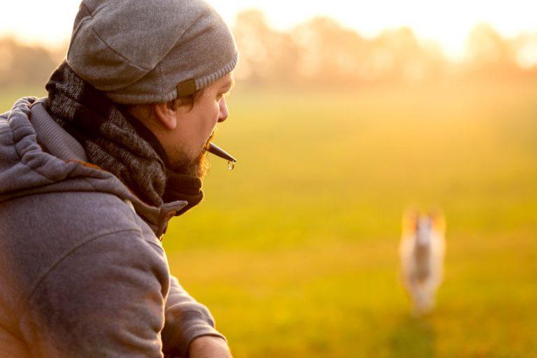 Hombre entrenando perro