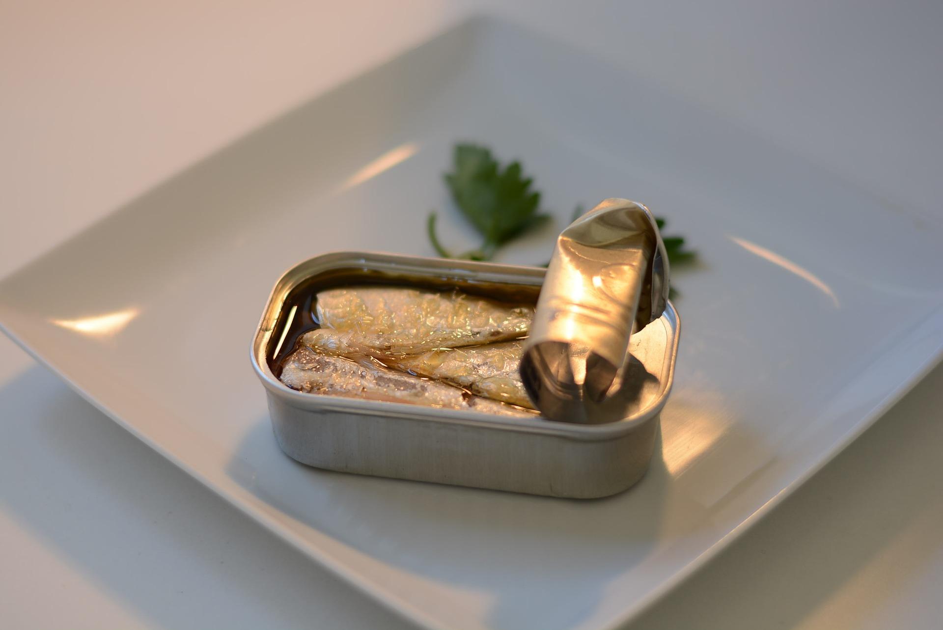 sardinas dentro de lata