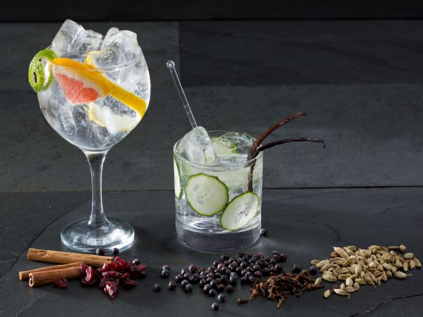 19615856 – gin tonic varied cocktails with lima cucumber and grapefruit and spices