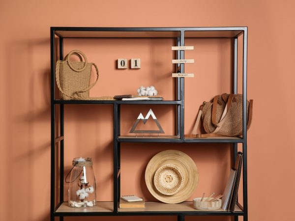 Stylish shelving unit with decorative elements near color wall. Interior design