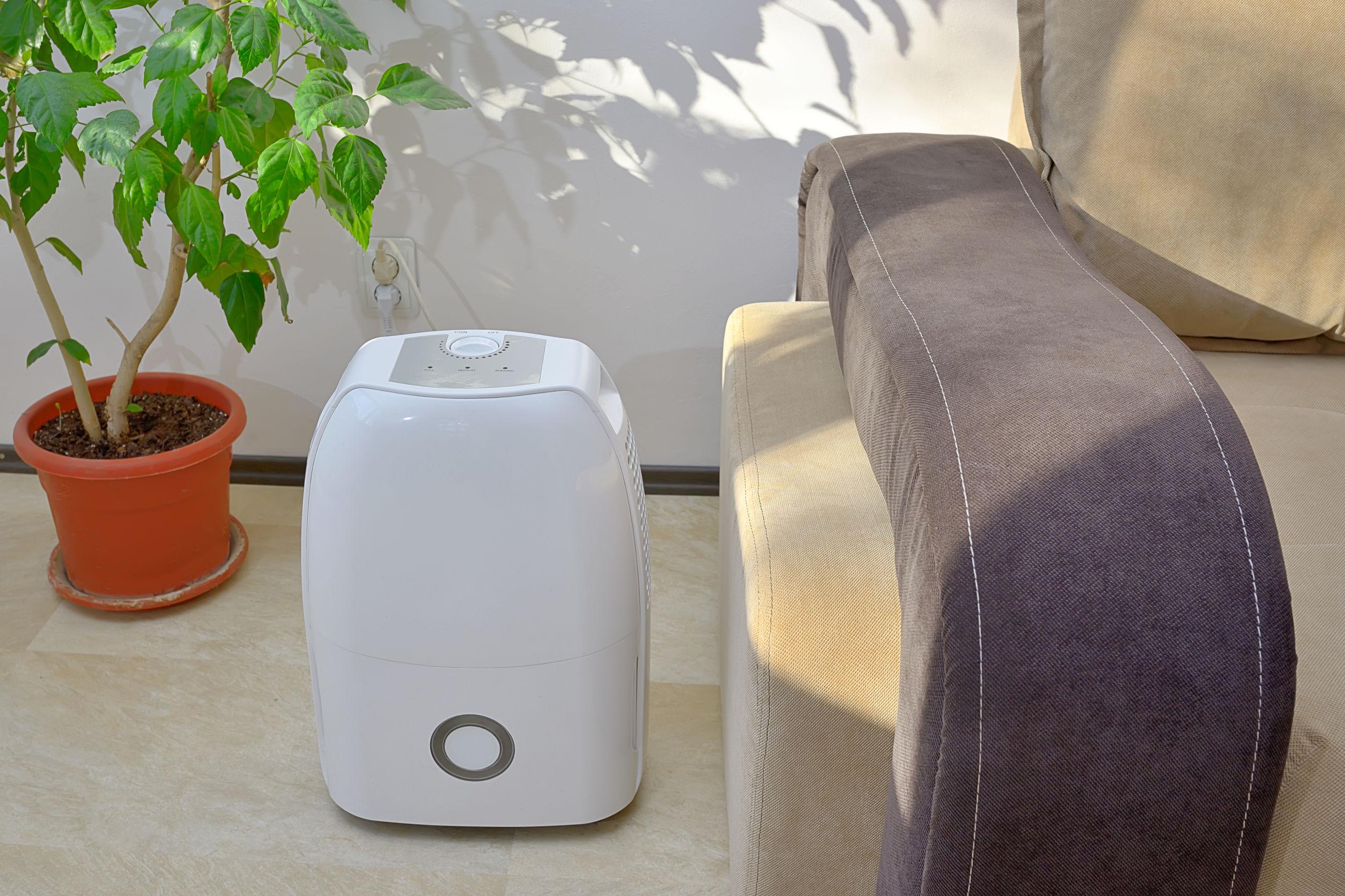 Climatizador portátil colect agua del aire dentro de la sala de estar