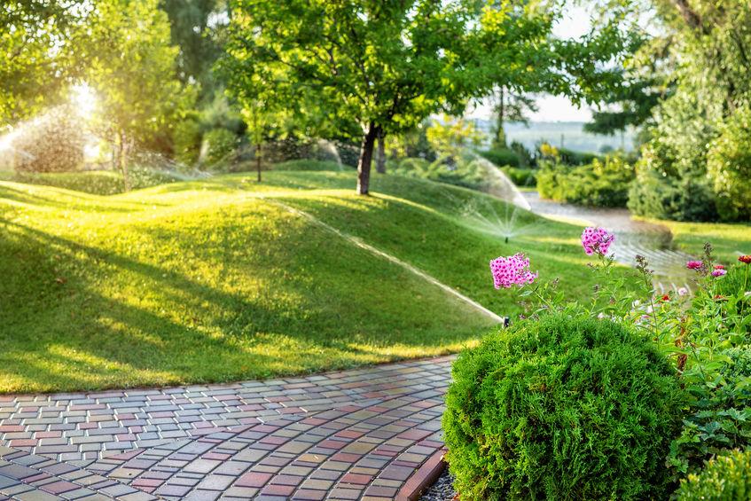 aspersor en jardin