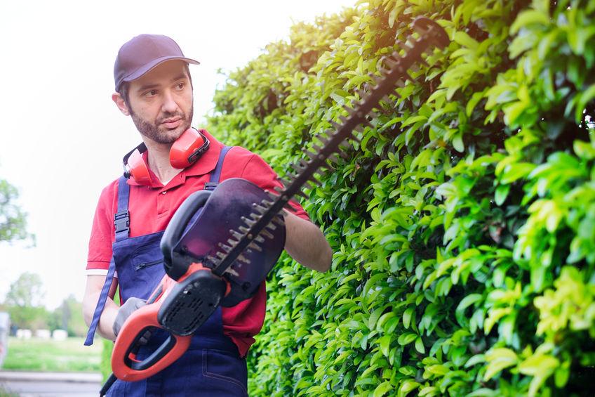 hombre cortando jardin