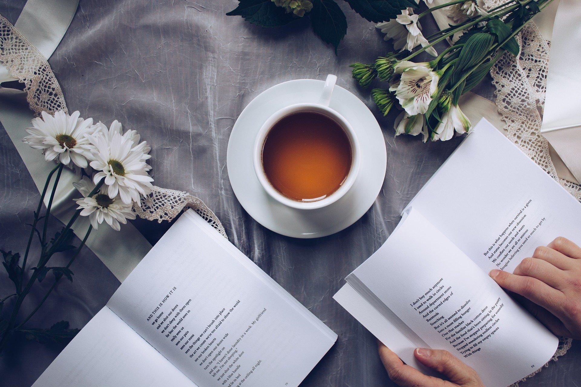 libro y te