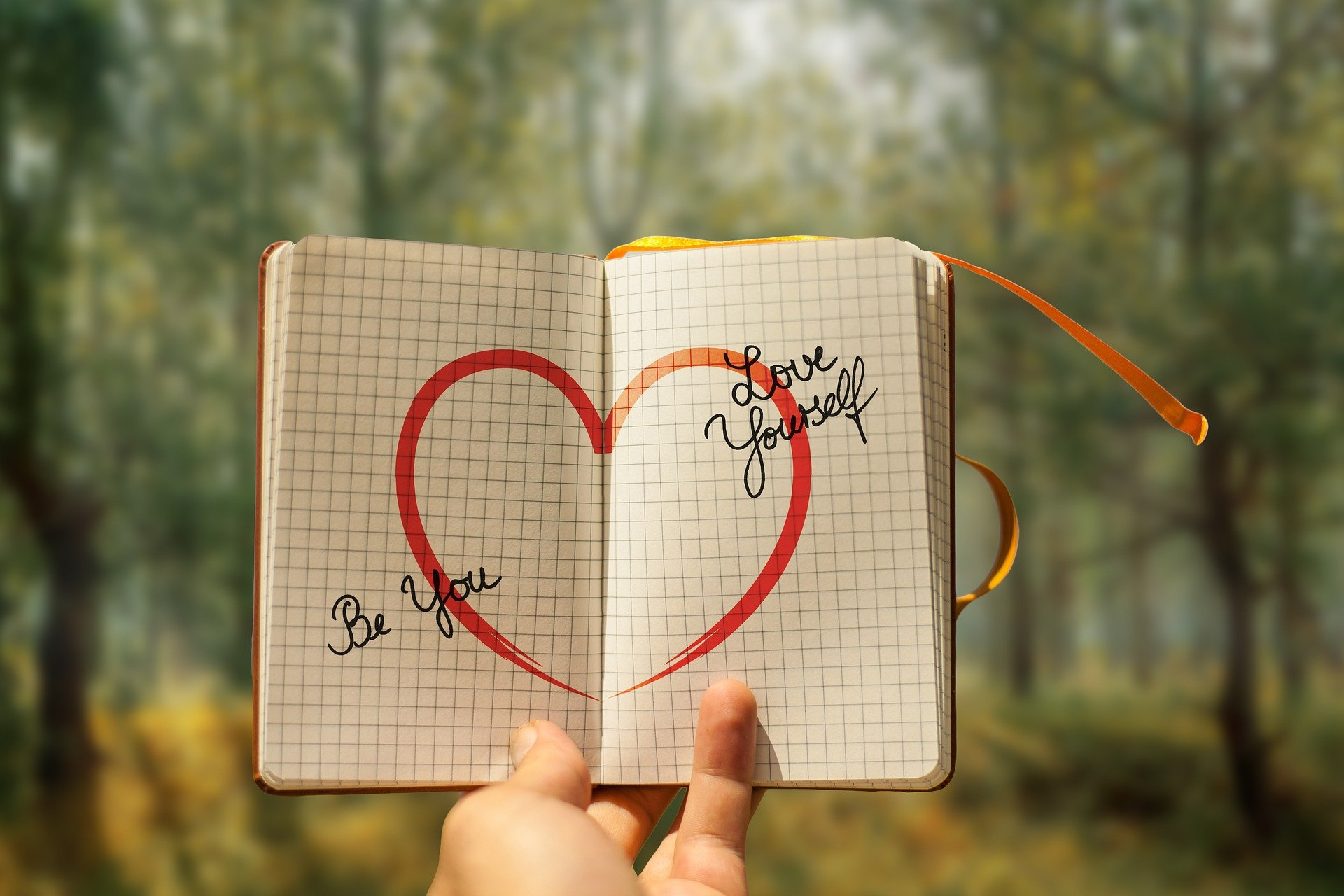 libro de liibro de amor