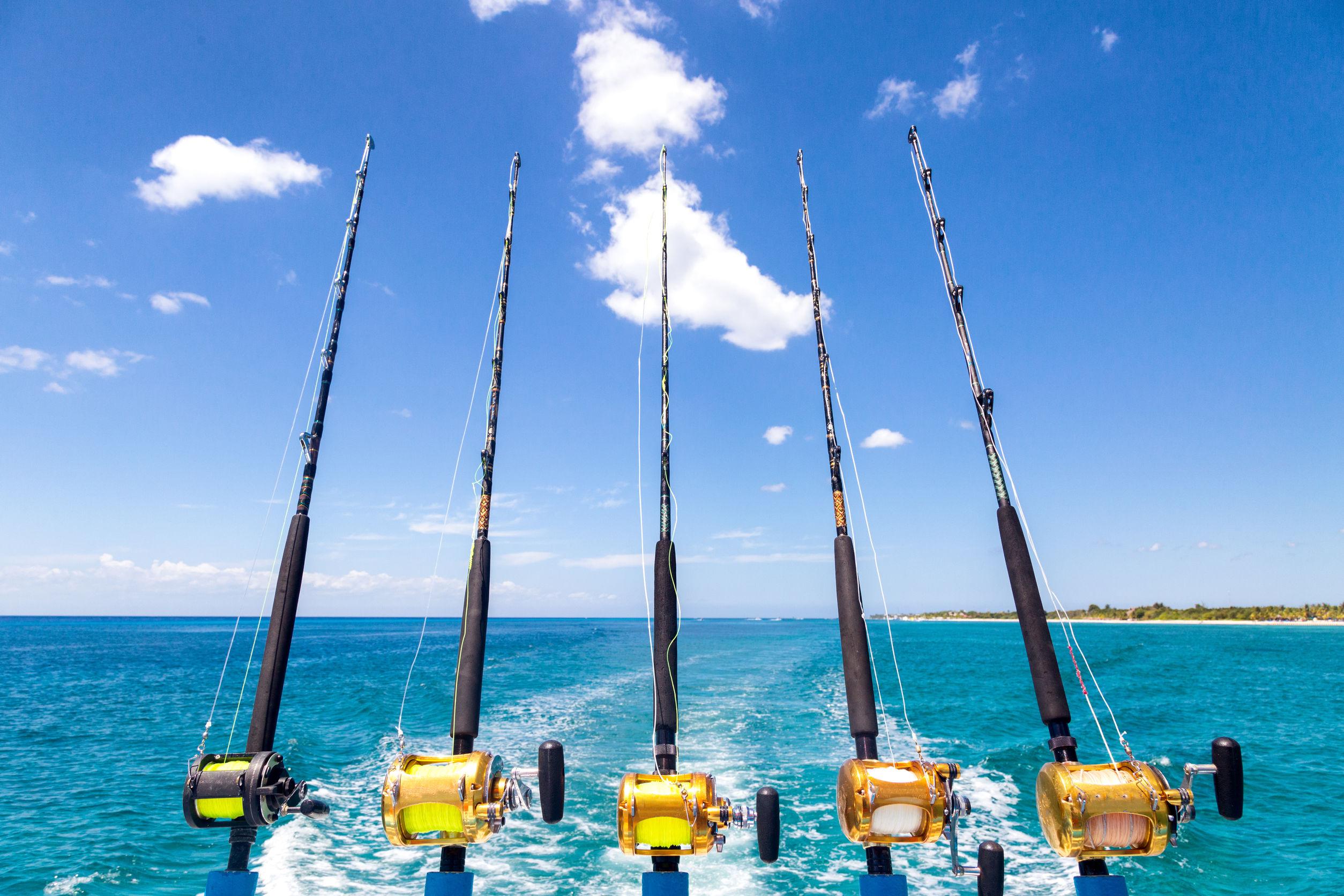Fila de cinco caña de pescar