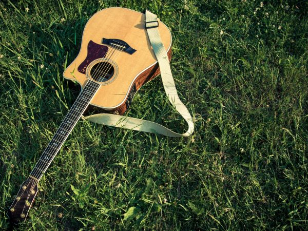 14215208 – acoustic guitar in the grass
