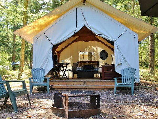 50472372 – luxurious glamping cabin in the woods with fire pit