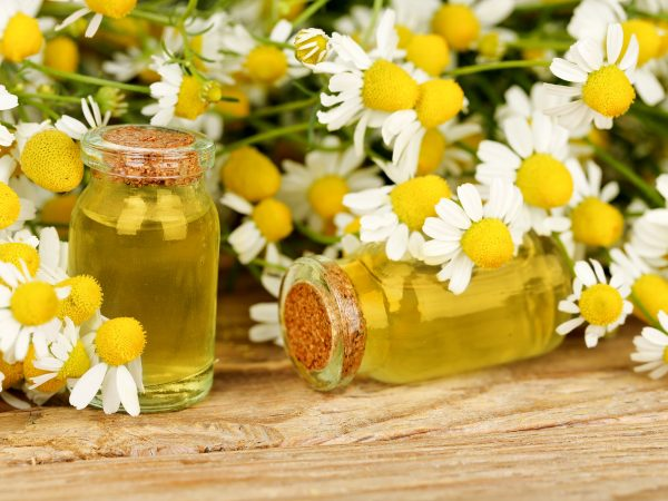 homeopathy concept with bottles and chamomile flowers on wood