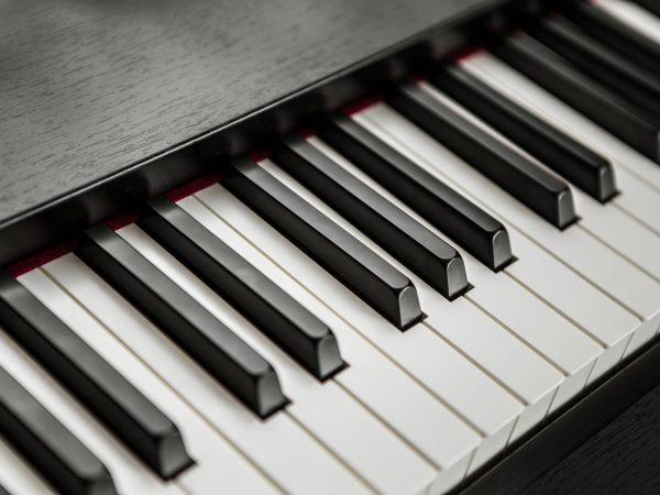 fragment of piano keyboard